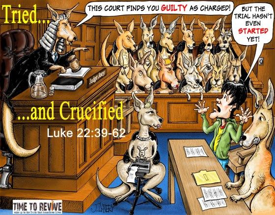Kangaroo court color